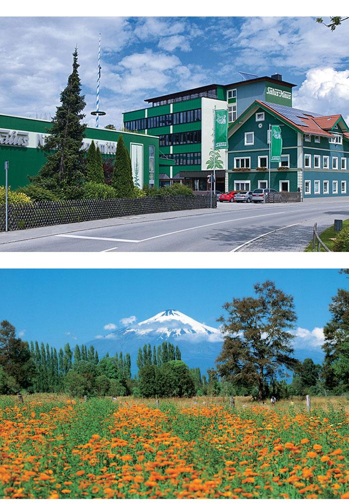 Selia a Salus Haus, Gjermani (foto 2) dhe Ferma bimore Futacoyan në Kili (foto 3)